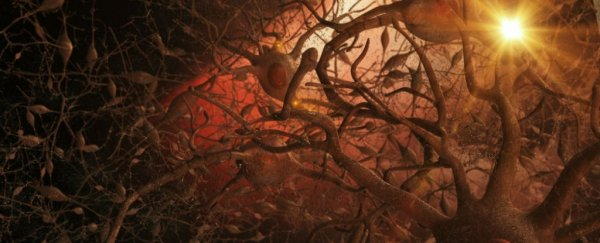 brain-tangles_1024